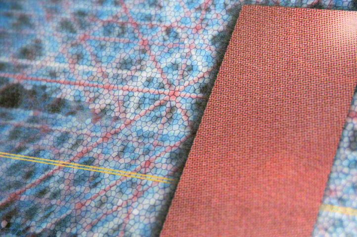 Meronym Print – Detail