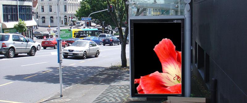CzrArt: Art Billboards 21 (2008)