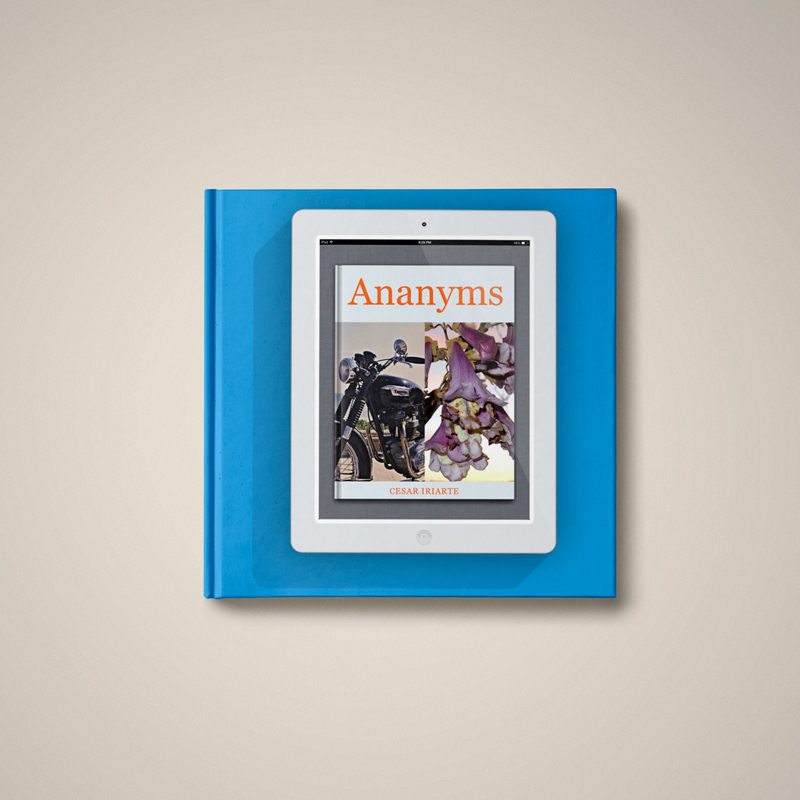 CzrArt: Ananyms Book