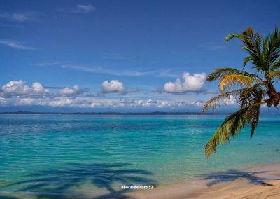 CzrArt - Viajero En Bocas del Toro